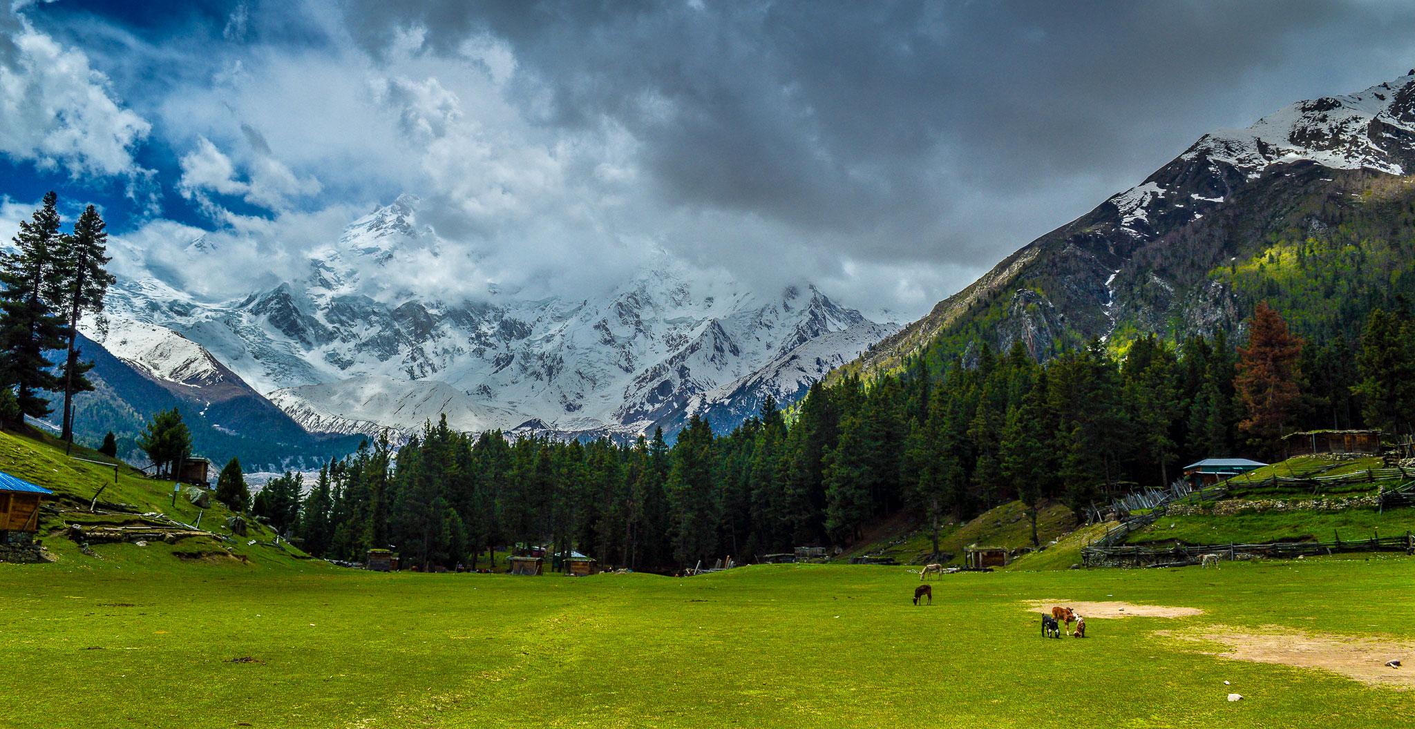 North Pakistan Tours