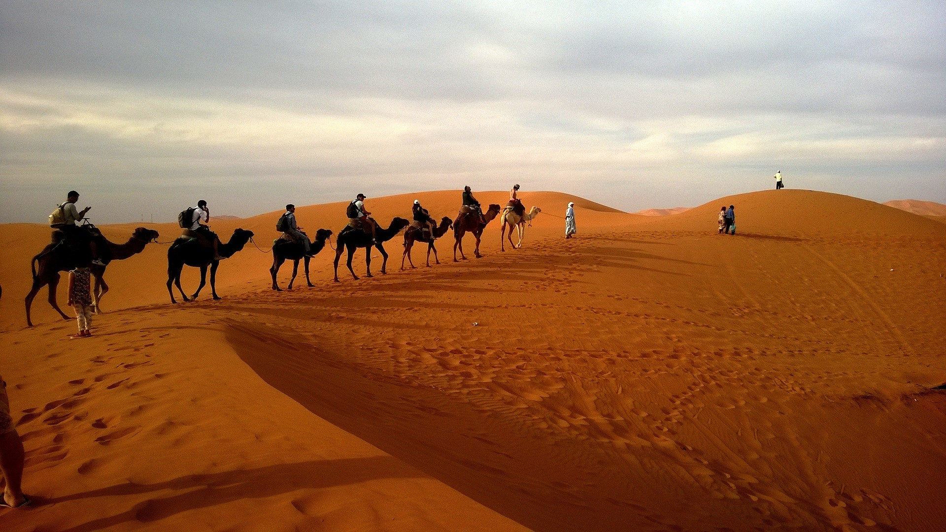 Cholistan Camel Safari